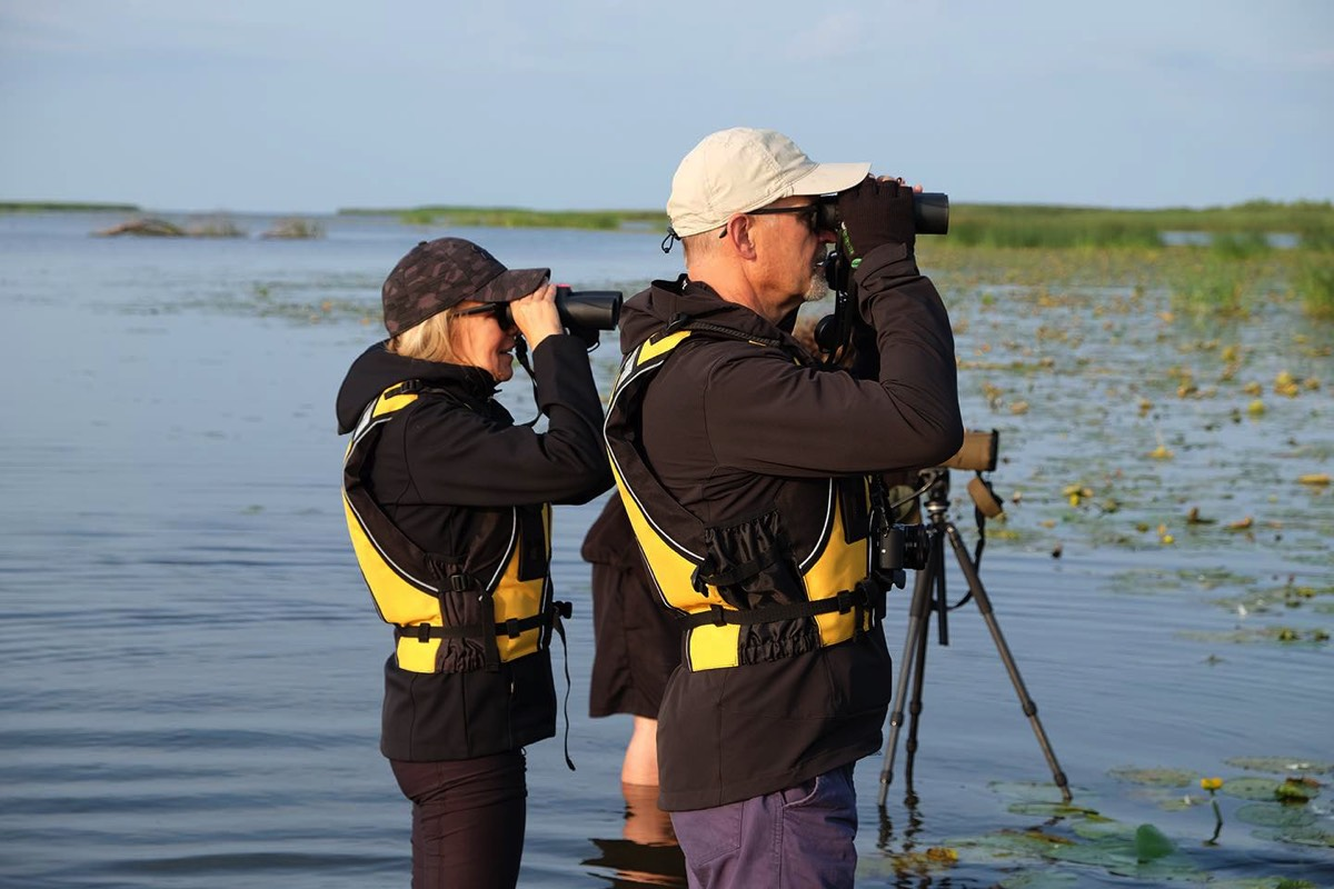 Guest searching for birds with binoculars